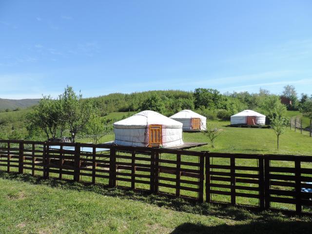 Sono arrivate le nuove yurta